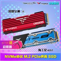 十铨M.2 NVMe SSD256G 512G 1T PCIe海王星水冷固态硬盘 风暴女神