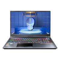 TERRANS FORCE 未来人类 T5M-27M8S1 15.6英寸 笔记本电脑 (灰色、酷睿i7-10875H、32GB、1TB SSD、RTX 2070 Max-Q)