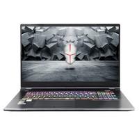 TERRANS FORCE 未来人类 T7M-26X7S1 17.3英寸 笔记本电脑 (灰色、酷睿i7-10750H、16GB、1TB SSD、RTX 2060)