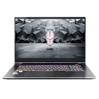 TERRANS FORCE 未来人类 T7M-27M8S1 17.3英寸 笔记本电脑 (黑色、酷睿i7-10875H、32GB、1TB SSD、RTX 2070 Max-Q)