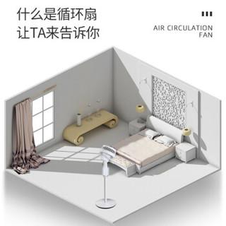 长虹(CHANGHONG)空气循环扇/涡轮扇/遥控电风扇/立柱式落地扇 机械款