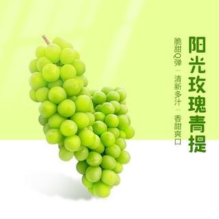 PAGO JOY 百果心享 级阳光玫瑰青提子 4斤