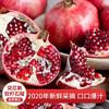 【京东速运】 四川会理突尼斯软籽甜石榴5斤装 新鲜水果