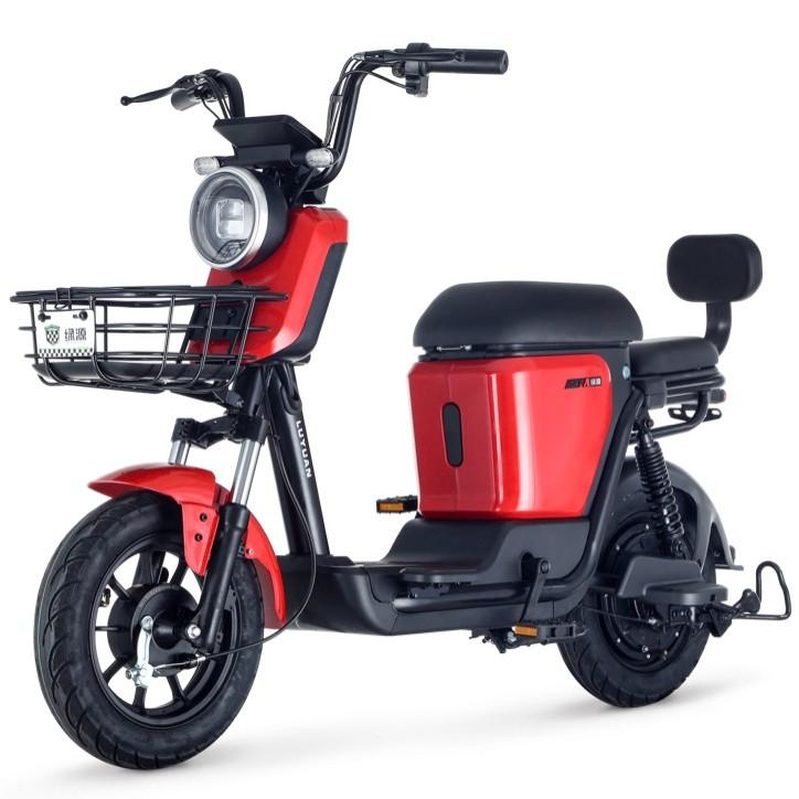 Luyuan 绿源 ZFA 蜜豆 48v24ah 锂电池新国标电动车 雪山白 锂电48V24Ah