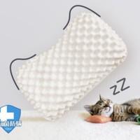 CatzZ 瞌睡猫 泰国进口乳胶狼牙枕 57*35*9/11cm 一对装