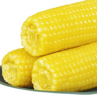 玉米神甜糯玉米 黄糯10根*220克 *3件