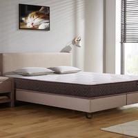 CatzZ 瞌睡猫 经典款 邦尼尔乳胶弹簧床垫 120*200*15cm (椰棕mini版 )