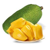 桃李村 新鲜海南菠萝蜜   20-26斤
