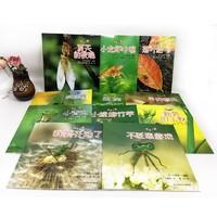 《亲亲自然科学图书馆系列 寻找春天绘本》全套11册