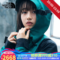 TheNorthFace北面男款女款1994MountainLightJacket复古冲锋衣4R52 4R52NL1 M