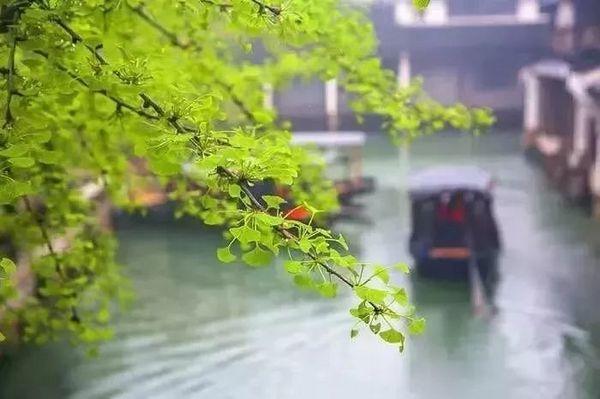 江苏 昆山托尼洛·兰博基尼酒店 景观房2晚(含早餐)