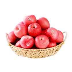 佳农 烟台苹果 5kg 红富士 一级果 单果重约160g-200g 生鲜水果 *2件+凑单品