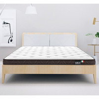 CatzZ  瞌睡猫 椰棕床垫硬垫 120*200*6cm