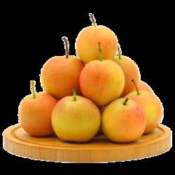 东方态美 南果梨精选大果 5斤