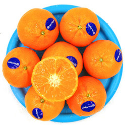 南非进口柑橘 3斤家庭装 单果重约80-120g 生鲜柑橘水果 *5件