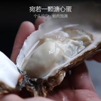 wecook 乳山生蚝 三倍体生蚝5斤