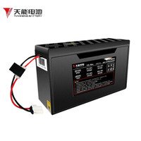 天能 48V12Ah T4812 电动车锂电池