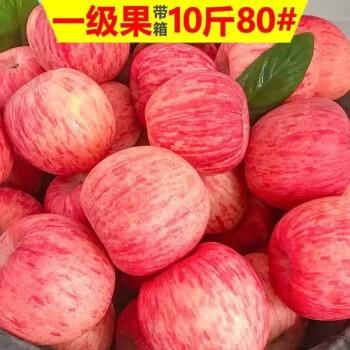 华北强 山西红富士苹果 精选大果 10斤装