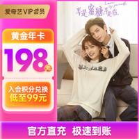 iQIYI 爱奇艺 VIP会员12个月