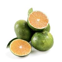 苗家十八洞 湖北宜昌青皮蜜橘5斤装 单果果径60mm 酸甜多汁 时令生鲜水果