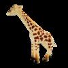 wenno 维亮 仿真动物模型玩具 各种动物