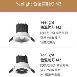 Yeelight智能光源套装mesh网关版小米色温筒灯射灯灯泡M2无主灯 网关(Mesh版)