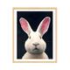 艺术品:季大纯 动物系列客厅装饰画挂画 收藏版画 油画 兔 装裱尺寸:54×45cm 580元包邮