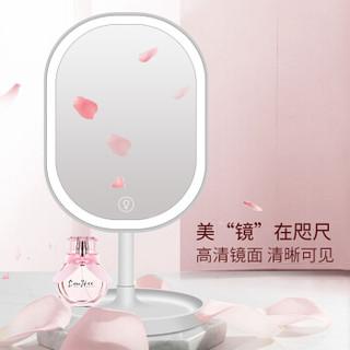 LLANO 化妆镜带灯led智能美妆镜补光梳妆镜七夕情人节礼物送女朋友送老婆台式白色款TD-025W