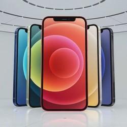 Apple 苹果 iPhone 12 5G 智能手机