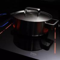 Schott 肖特CERAN EXCITE®微晶玻璃炉灶板