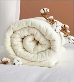 DAPU 大朴 新疆棉花被胎 春秋被 4斤 200*230cm