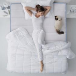 CatzZ 瞌睡猫 蓝净灵C3 邦尼尔弹簧床垫(椰棕款)120*200*23cm