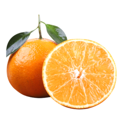 现摘现发四川爱媛38号果冻橙橙子新鲜当季水果柑橘蜜桔子整箱