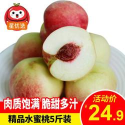 沂蒙山水蜜桃 精品大果毛桃 新鲜桃子水果 现摘现发 蒙阴 新鲜水蜜桃 精品大果4.5-5斤