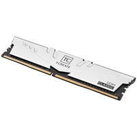 Team 十铨 T-CREATE创作者系列 DDR4 3200MHz 台式机内存 32GB(16GB*2)银色