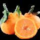 不知火丑橘当季新鲜橘子丑八怪柑橘水果3-8斤装 5斤装 *5件 16.9元(需用券,合3.38元/件)