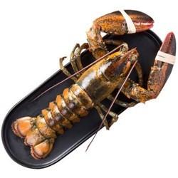 wecook 味库 加拿大进口鲜活波士顿大龙虾1只 550-650g *2件