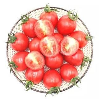 绿鲜知 圣女果 小番茄 500g *3件