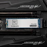 十铨创作者 开创者M.2 SSD 1TB 固态硬盘 开创者M.2 1TB