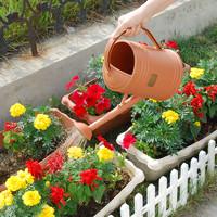 爱丽思IRIS 简约花草洒水壶 树脂喷壶 大容量园艺喷水壶BTW 3.6L