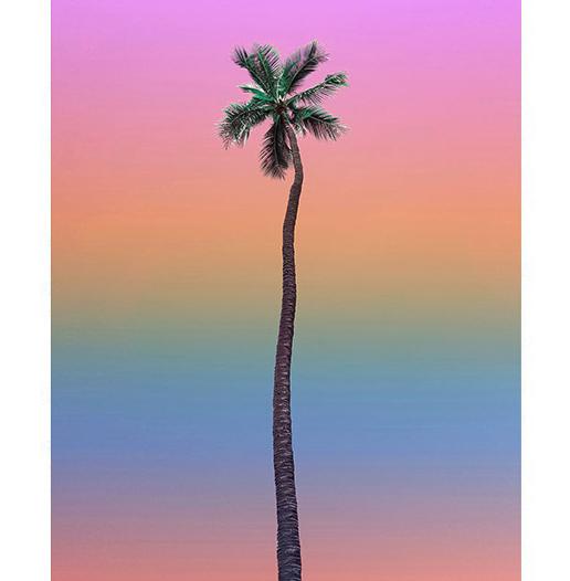 夏威夷艺术家 Aryton Page艾瑞顿·佩吉 《氛围 8号》