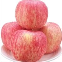 泥坡岭 山西红富士苹果 5斤精选