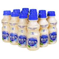 原味乳酸菌胃动力饮品340ml*12瓶