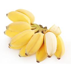 广西香蕉 小米蕉2.5斤 (偶数发货 拍4件减9元合并发9斤)
