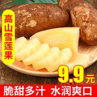 薯家上品 云南天山雪莲果3斤/5斤/9斤 红泥黄心菊薯应季新鲜现挖水果
