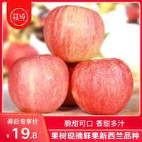 枝纯苹果新鲜水果当季整箱嘎啦果红富士10斤脆甜乔纳金丑苹果5斤