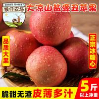 凉山州盐源冰糖心丑苹果新鲜当季水果5斤当季丑苹果红富士