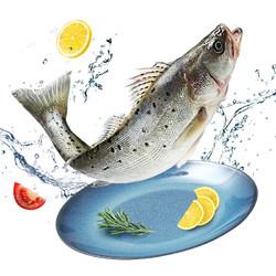 品珍鲜活 国产三去海鲈鱼 400g*3条