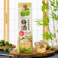 日本原装进口洋酒 归素 南高梅梅酒青梅子酒甜酒 2L  大容量家庭团圆闺蜜小聚分享装 单盒