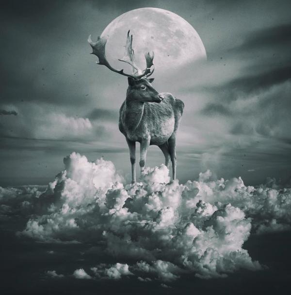 波兰艺术家 托马什·扎切纽克 作品《云鹿》Jelen